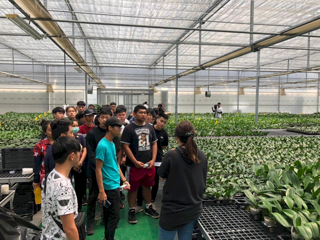 大馬僑生來台探索農業 驚嘆蝴蝶蘭培植技術