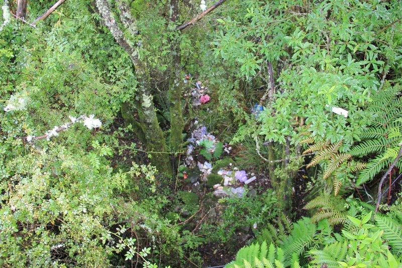 玉山國家公園管理處5日指出,塔塔加台18線108.4公里處炊煮區旁山溝是神木溪上游,卻遍布食材包裝、衛生紙、廚餘、罐頭、塑膠袋等垃圾。(玉管處提供)