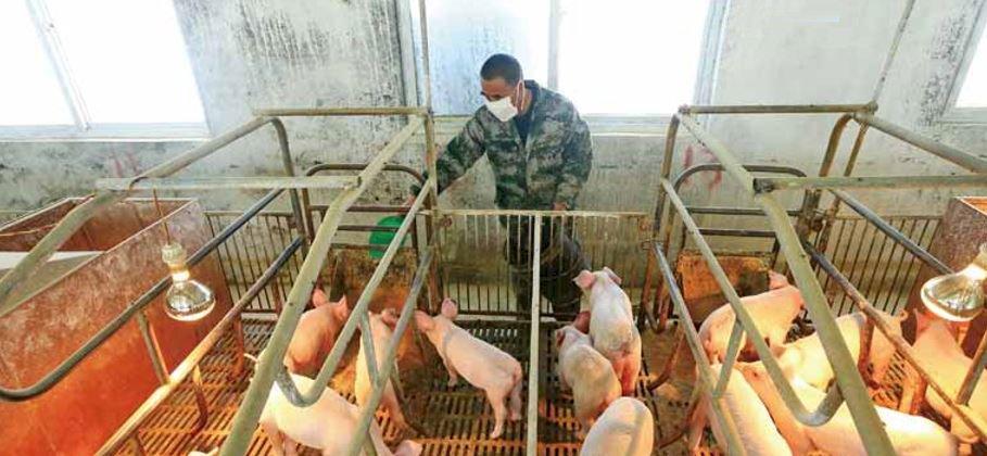 天災人禍導致缺糧 中國怕怕:一旦國際糧食斷鏈將大難臨頭