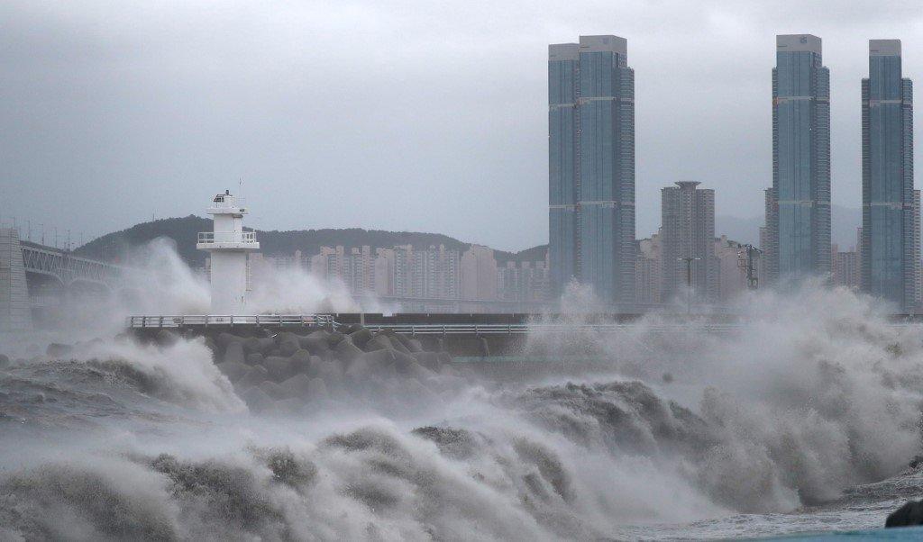 與海神同行 朝鮮半島防颱全力警戒
