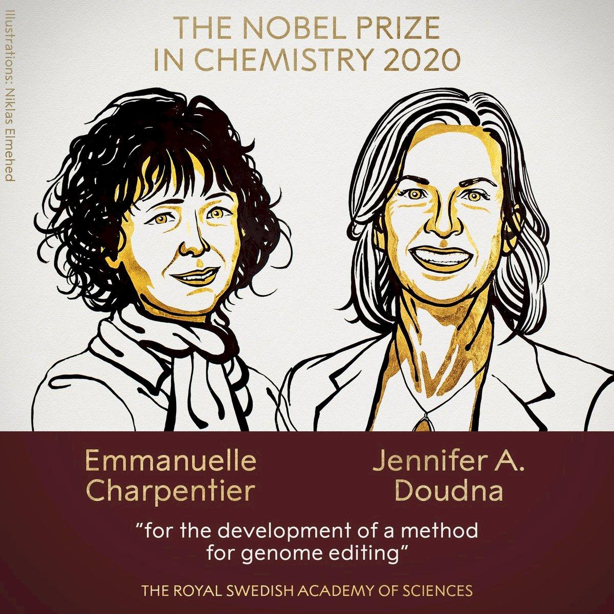 2020諾貝爾化學獎:美法2女科學家共享