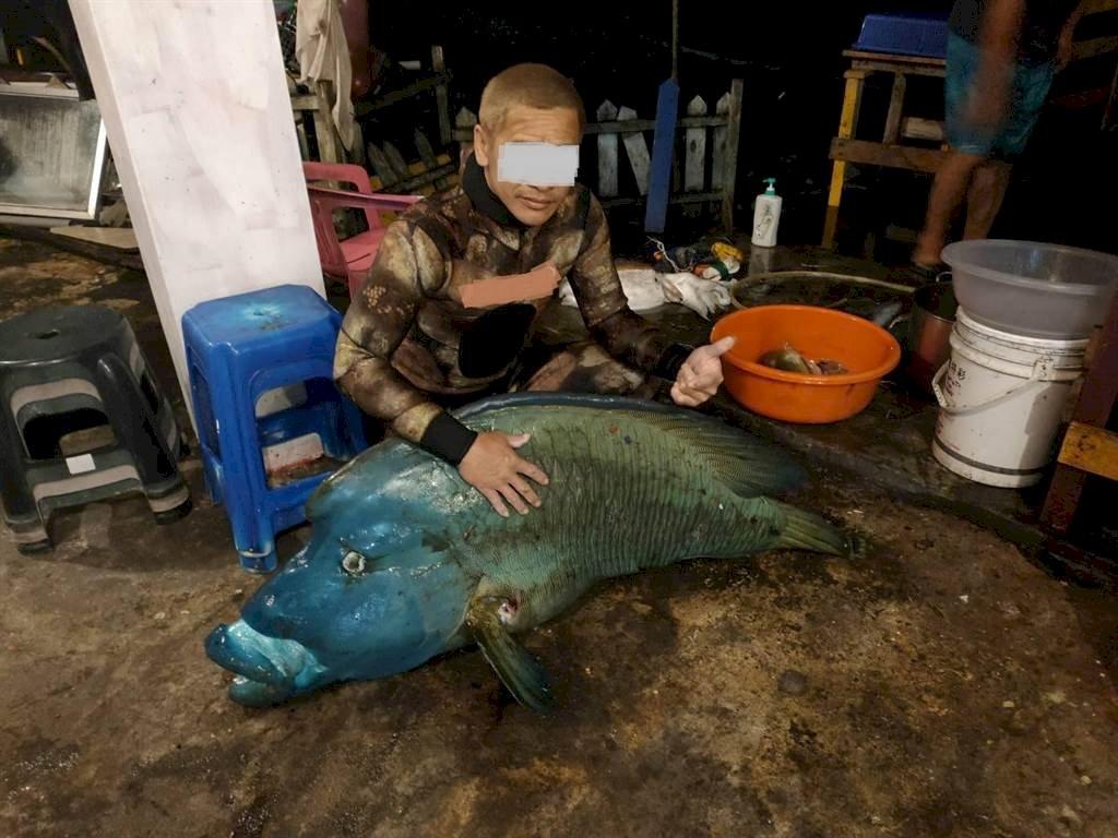 捕捉珍貴保育類龍王鯛還合影PO網 蘭嶼鄉民怒了