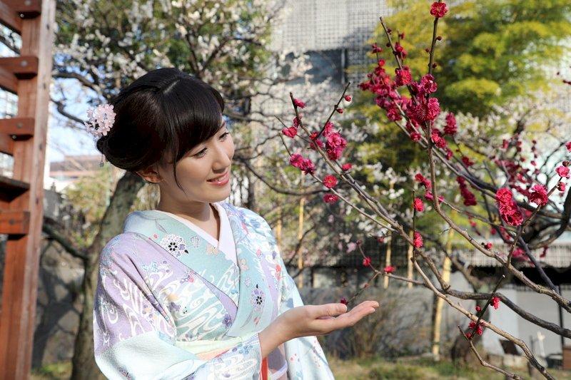 日本上千年「花見文化」 最初是以賞梅為主流