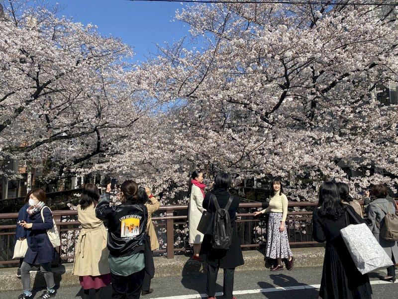 疫情未歇!日本振興國旅方案難全國重啟