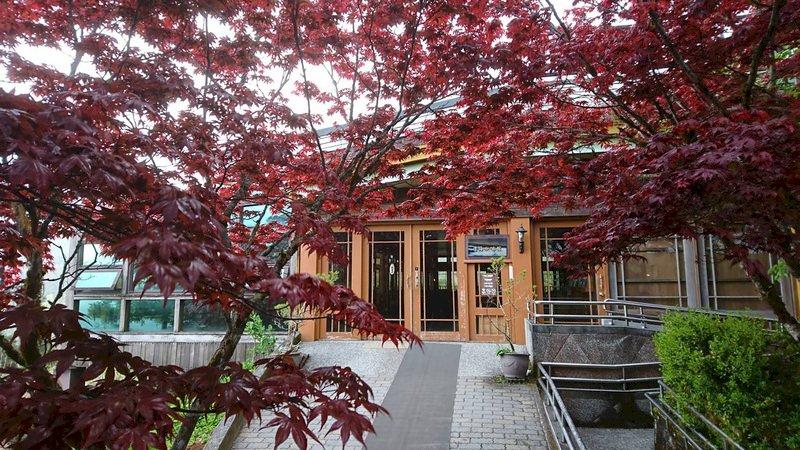 宜蘭太平山紫葉槭火紅 優美景致維持至9月