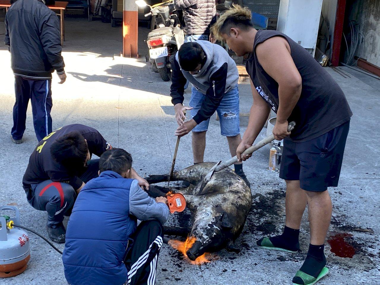 誤被「山豬吊」得「斷肢逃生」 改良獵具2千組供原住民免費換
