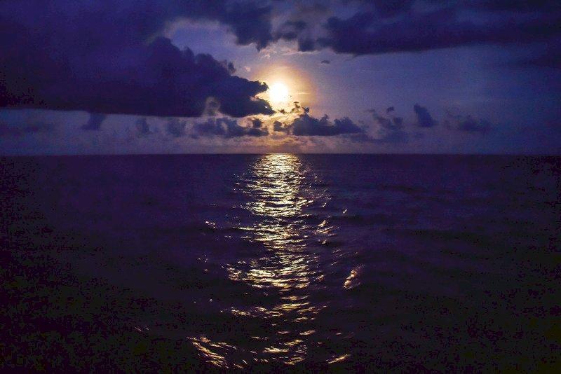追擊『月全蝕』5月26日花蓮海洋月光賞星船