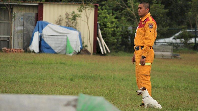 總統:依法領養退役搜救犬  無須為政治扭曲