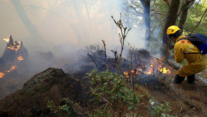 NCC前專委喬建中等5人引發玉山森林火災 林務局求償逾2億