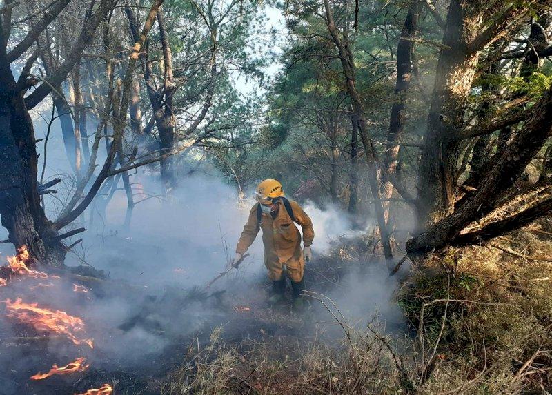 NCC官員引發玉山森林大火 喬建中:有報案無逃逸