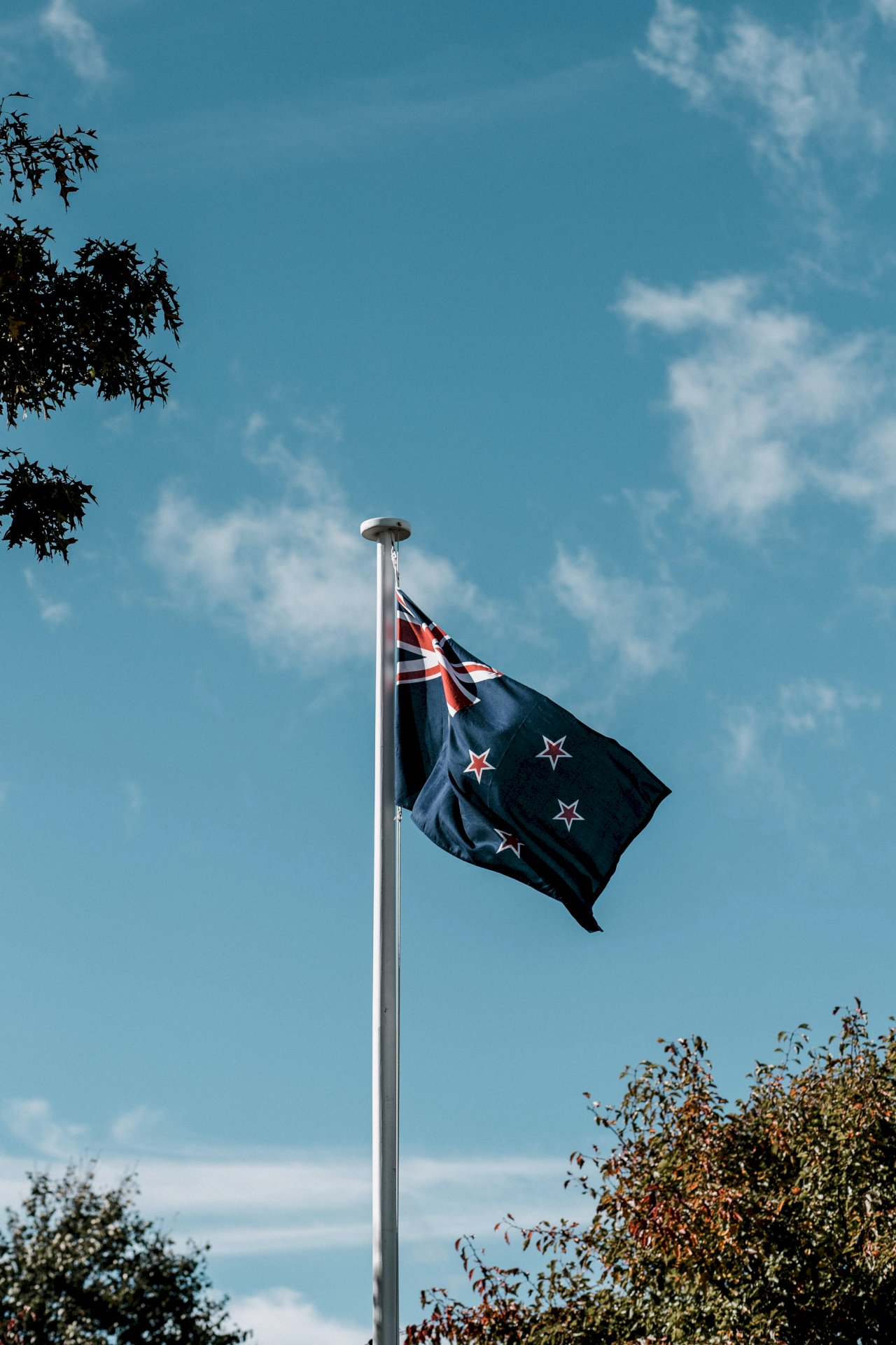 澳洲再傳群聚感染 紐西蘭喊停旅遊泡泡