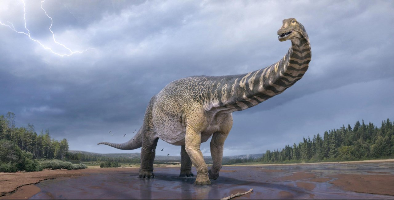 澳洲發現新恐龍 探索昆士蘭5考古景點