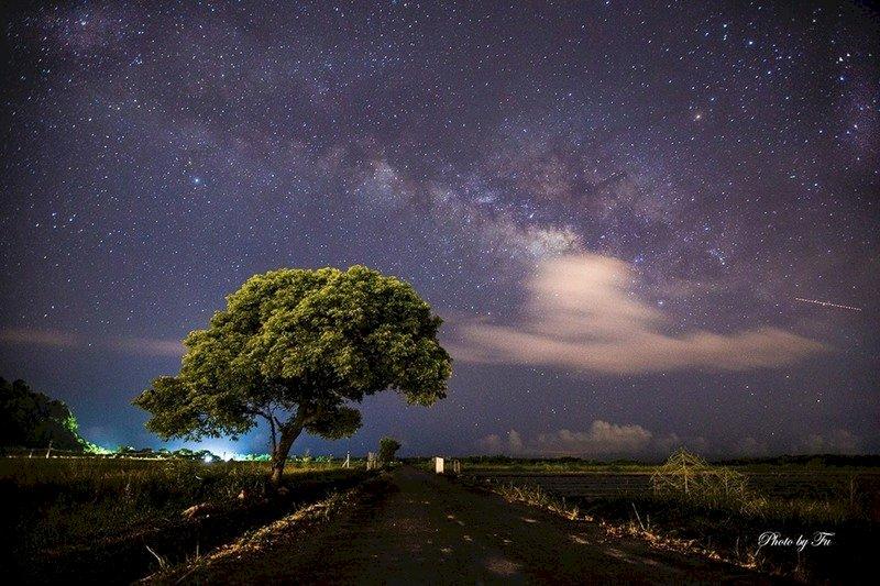 宜蘭大南澳金城武樹 超美銀河照曝光