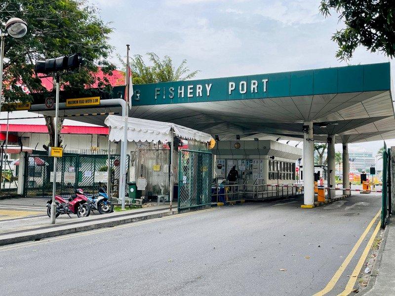 新加坡裕廊漁港群聚擴大 本土案例暴增163起