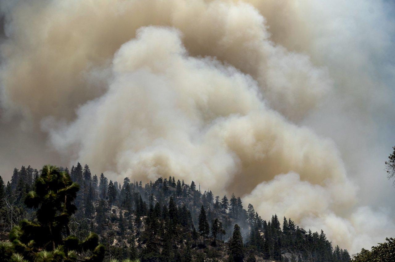 避免野火再起 加州太平洋瓦電將埋設1萬英里電線