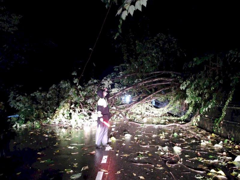 豪雨影響仍有逾8000戶停電 台電持續搶修