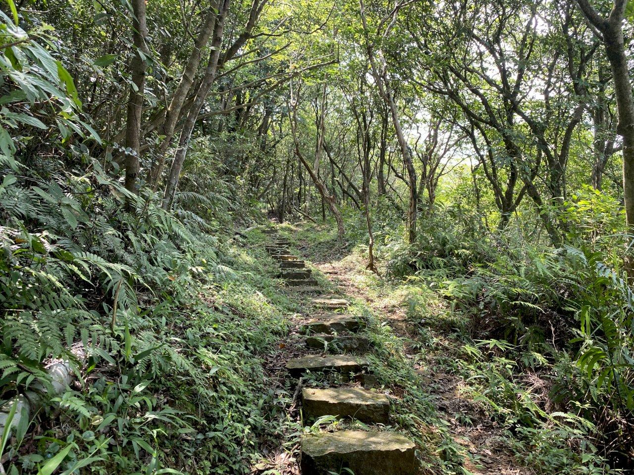 7條國家綠道 蘇貞昌推薦國人探詢走訪 親近台灣文化自然資產