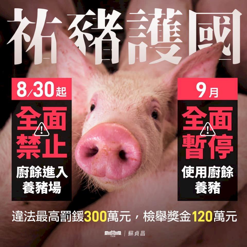 防堵非洲豬瘟入台 蘇揆:9月禁廚餘養豬 最高罰300萬