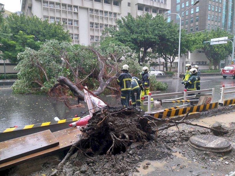 颱風璨樹釀全台201件災情 21點可望解除陸警