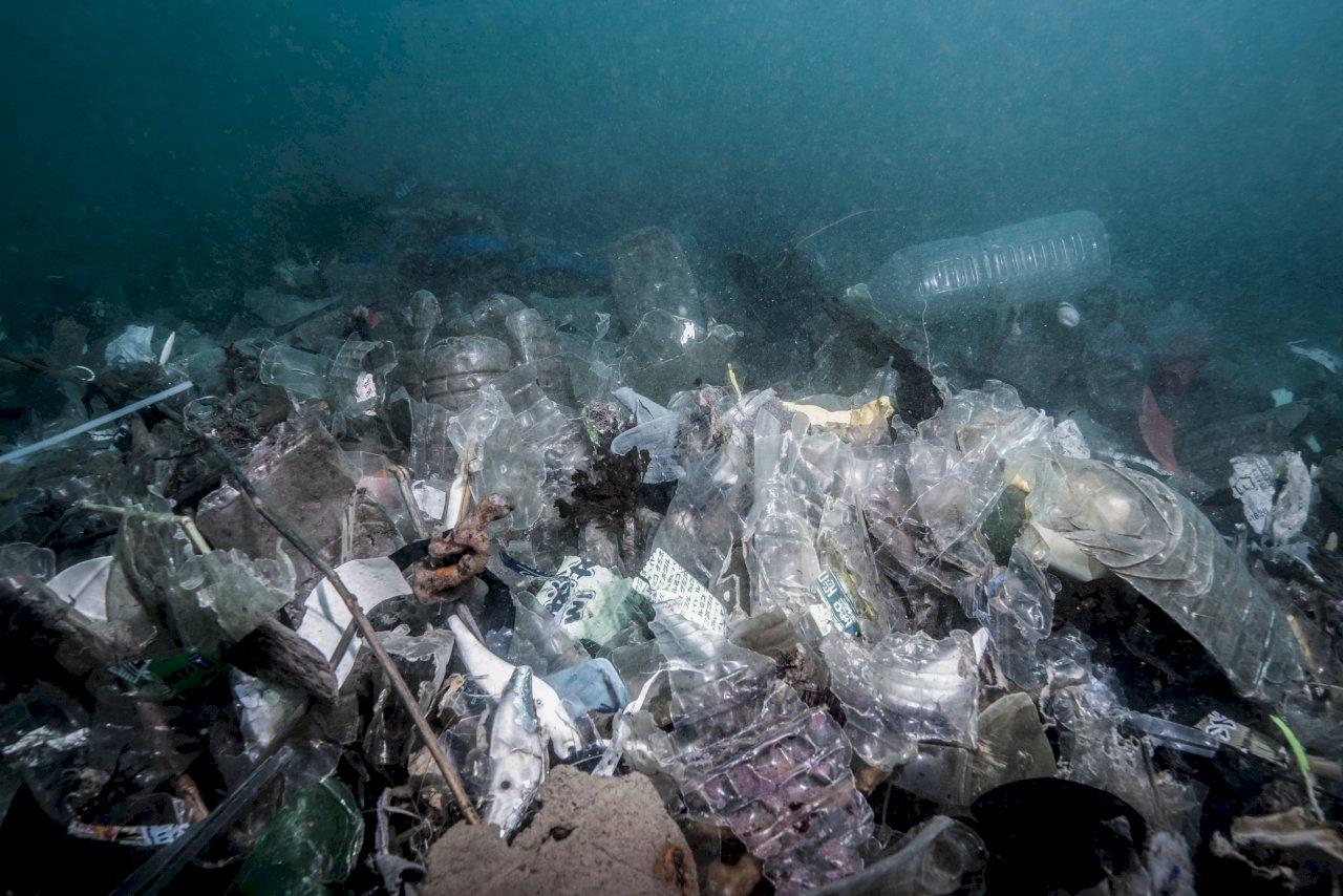 海保區一天清出422公斤垃圾 環團籲政府立即推出「海洋保育法」