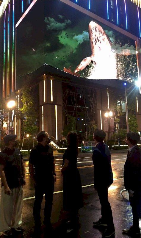 「輪迴」祼視3D動畫、「2049:完美預測」影集盡在高雄電影節