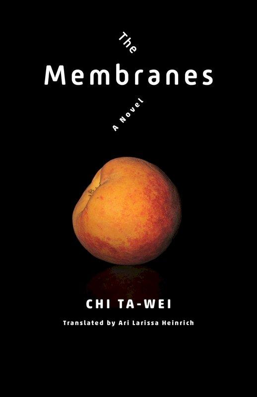 酷兒小說「膜」英譯本出版 紀大偉將與譯者對話