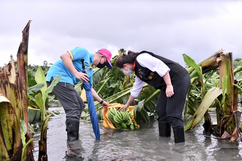 農委會啟動花蓮農災救助  即日起受理申請